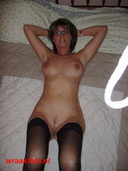 amadora gay shorthair